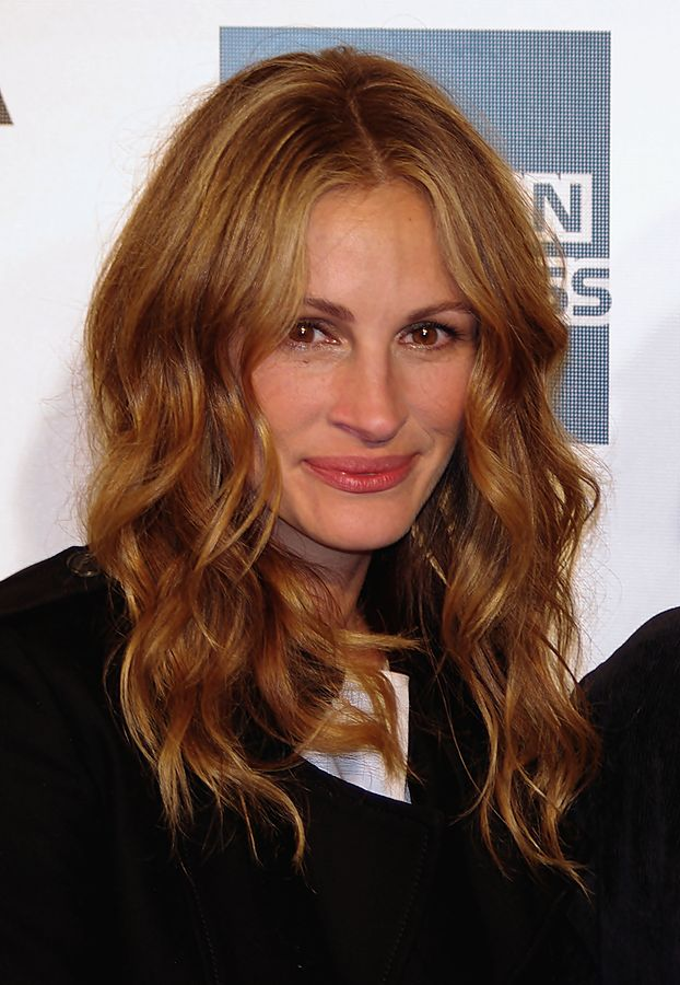 Julia Roberts may have been helped by being pretty, but hard work got her to where she is today ... photo by CC user David Shankbone on wikimedia