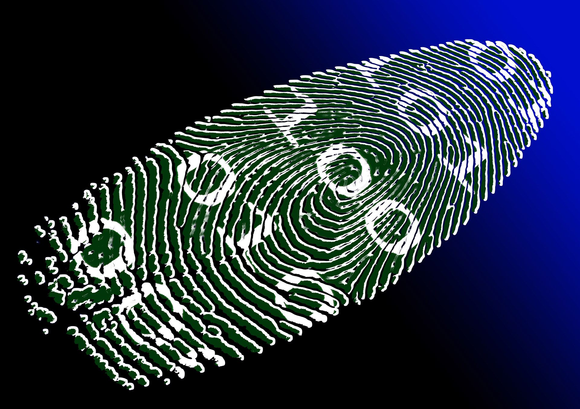 Will Identity Theft Be Your Business?